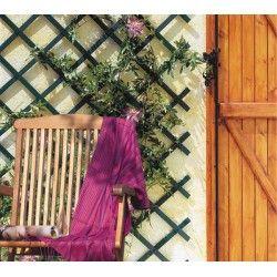 Celosia madera Profer
